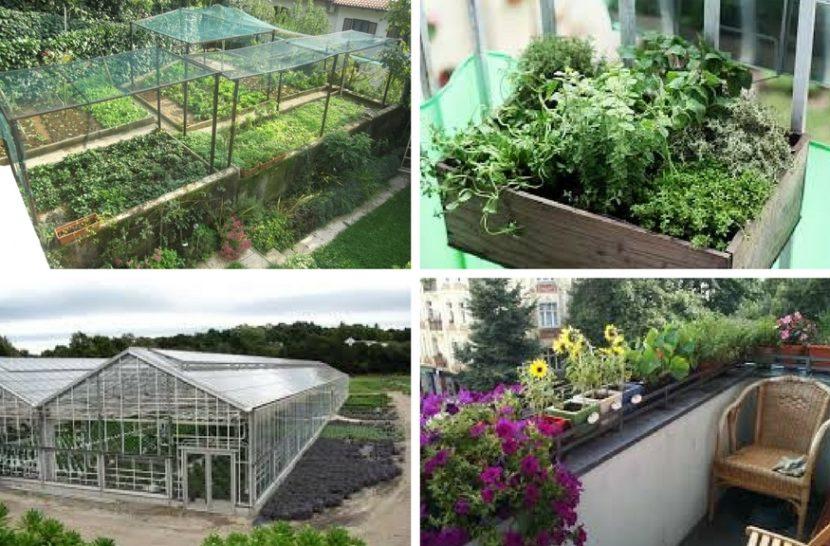 tipi vrtnarjenja