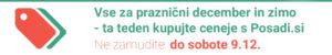 Pasica-Živex Miklavžev popust-1