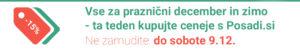 Pasica-Živex Miklavžev popust